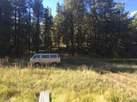 Van in Wilderness