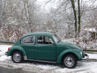 My 1983 Mexican Beetle in February 2018