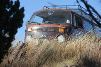 1978 VW Bus - Bear