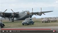 Berlin Airlift Beetles