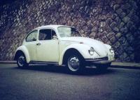 1972 Bug 1300
