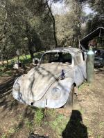 My 1969 bug project