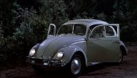 Herbie at Seabreeze Point