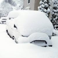 Westy snow