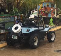 Island buggy