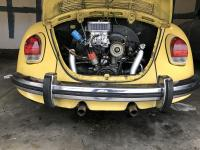 DRLA pic in Beetle