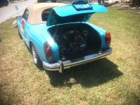 Ghia on side of road for sale