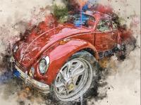Bug Artwork in Watercolors