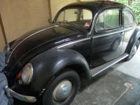1954 Oval Window Beetle