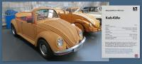 Basket-Woven 1971 Bug at the