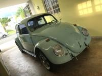 66 Beetle Bahama Blue