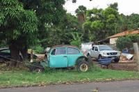 VWs in Hawaii
