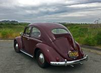 1954 oval