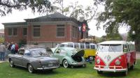 VWs in the downtown Park in Paso Robles