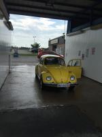 Bug at the car wash