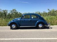 Indigo Blue 1960 sunroof type 117
