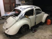 Harlot 66 beetle chop