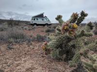 Recent Mex trip - drive home to Oregon
