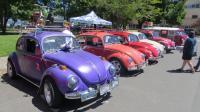 "Various 58-up Bugs at ""Camp & Shine"" Lakeport, CA Sat. June 16th, 2018"