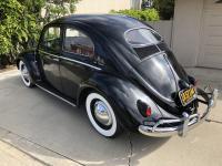 1955 Oval bug