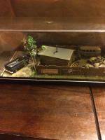 Custom Diorama