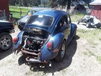 beetle bob new pics
