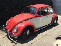 1967 Beetle