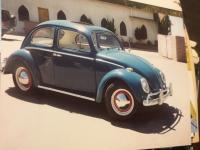 Henricks 64 Bug
