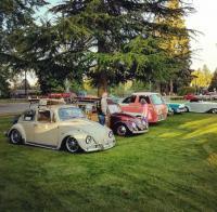 Slammed/Turbo VW Bug