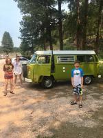 1977 sage green westfalia campmobile project