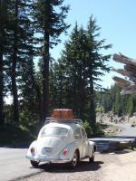 Road trip Betty 1966 Beetle Pearl White