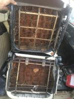 Difference between Ghia seats an Beetle seats