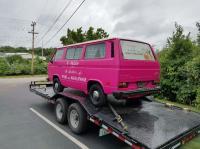Pink Vanagon