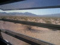 desert morn