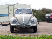 Daily -66 class 11 looker, Geländewagen