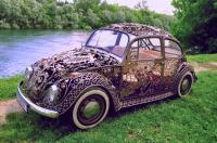 filigree beetle
