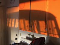 bus shadow