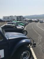 Southern Oregon Dub in.      8-18-18