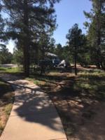 VW bus camper road trip