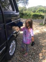 Waxing the van