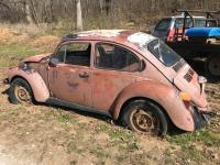patina bug