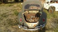 1963 Turkis Beetle