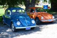My '64 and '74 Super Beetles