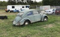 xkotekng's 58-59 beetle
