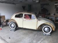 1964 Beetle photos