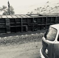 Mojave roadtrip- Tehachapi