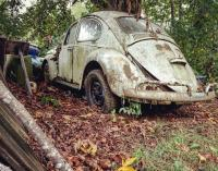 Rusty VW's