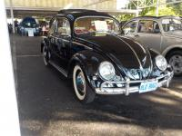 1955 Mexican built Beetle