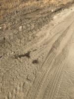 Mojave roadtrip - Rowen