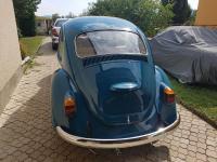 L360 beetle
